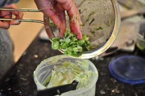 Adding cucumber to chutney cream cheese